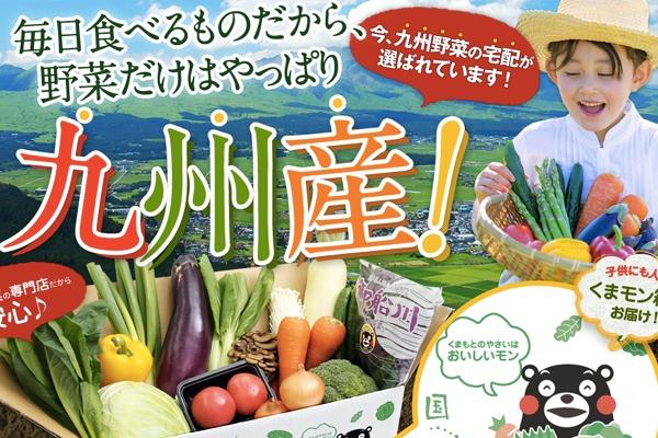九州野菜王国 様